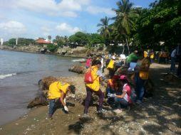 Leones participan en la jornada de limpieza de la Playa Montesinos. 20 Septiembre 2014.